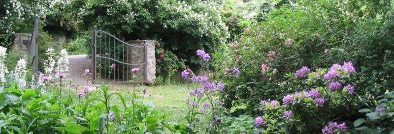 Il giardino giardini del casoncello for Cespugli fioriti da giardino