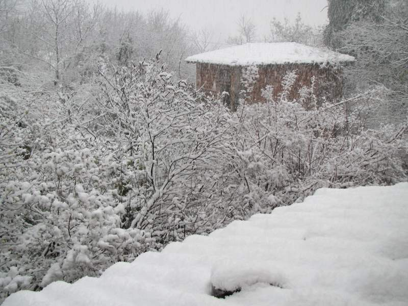2011 dicembre fotodiario8