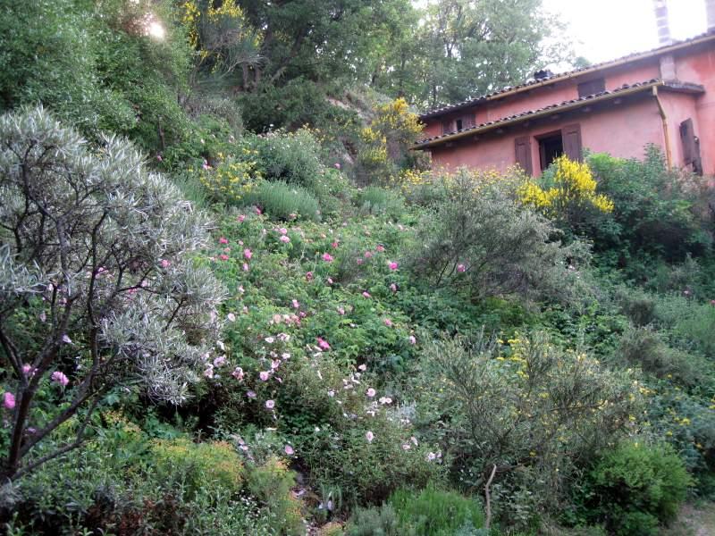 Costa della casa giardini del casoncello for Planimetrie della casa di gambrel