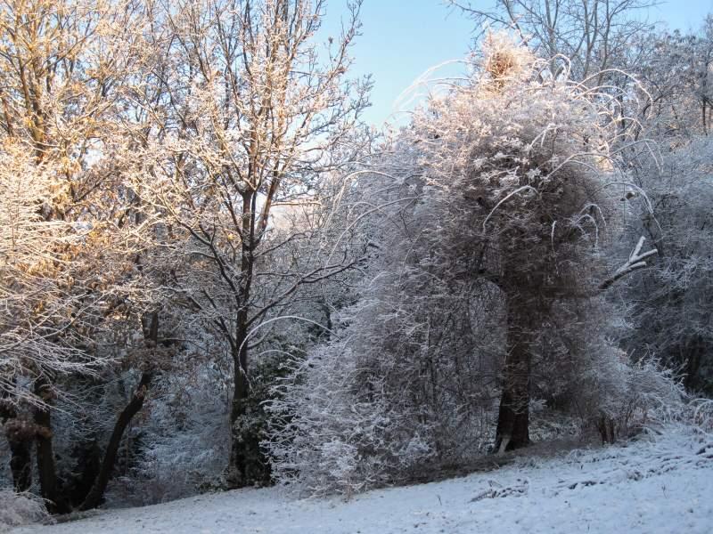 dicembre 2010 - fotodiario3