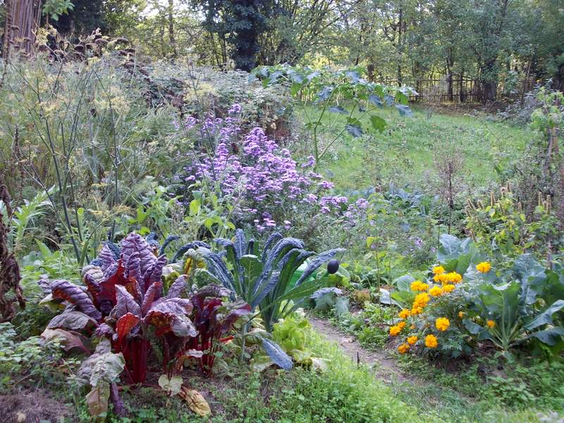 Orto giardino giardini del casoncello for Orto giardino