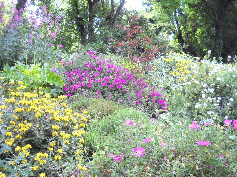 il_giardino_delle_erbe